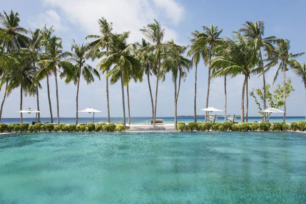 Побережье, пальмы, Мальдивские острова