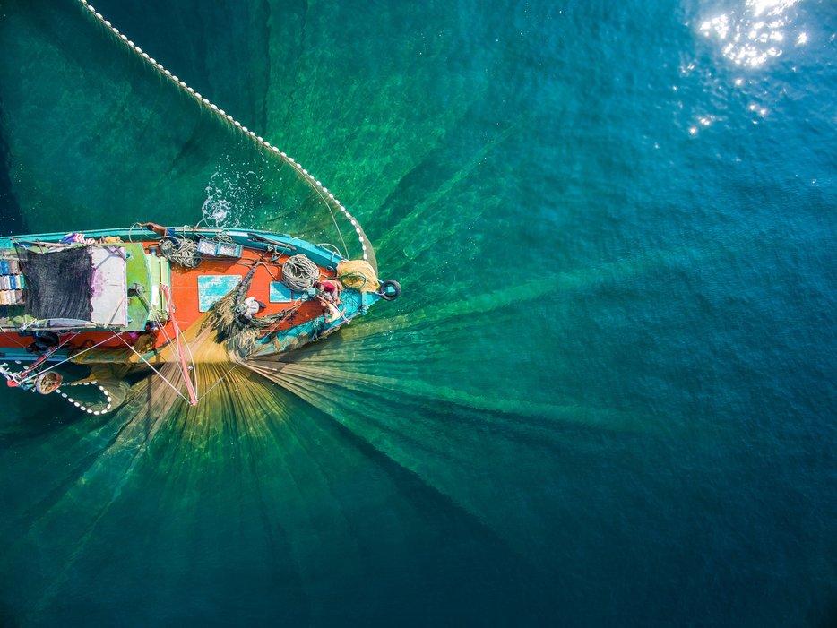 Рыбак за работой, Малайзия. Фото с высоты
