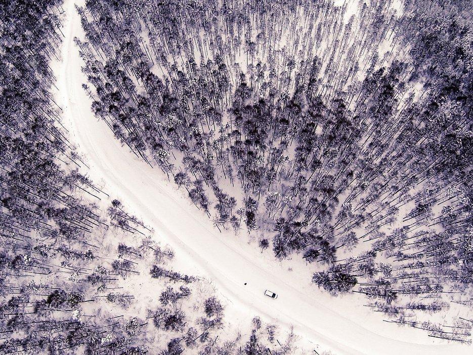 Замороженный лес, Нерюнгри, Россия