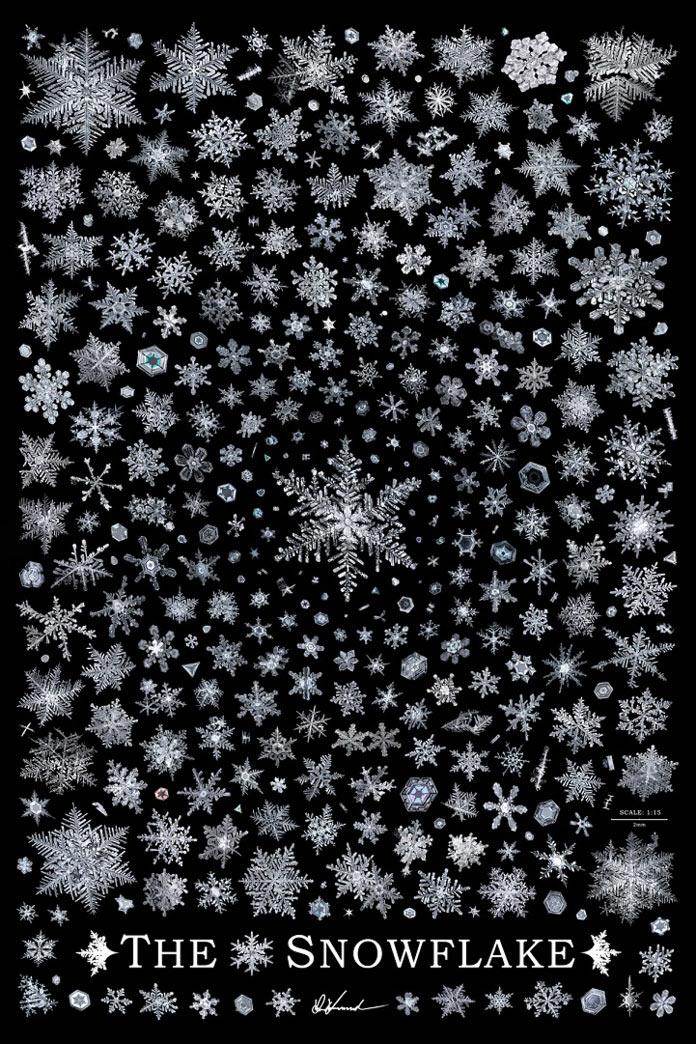 Снежинки, макрофото, Дон Комаречка