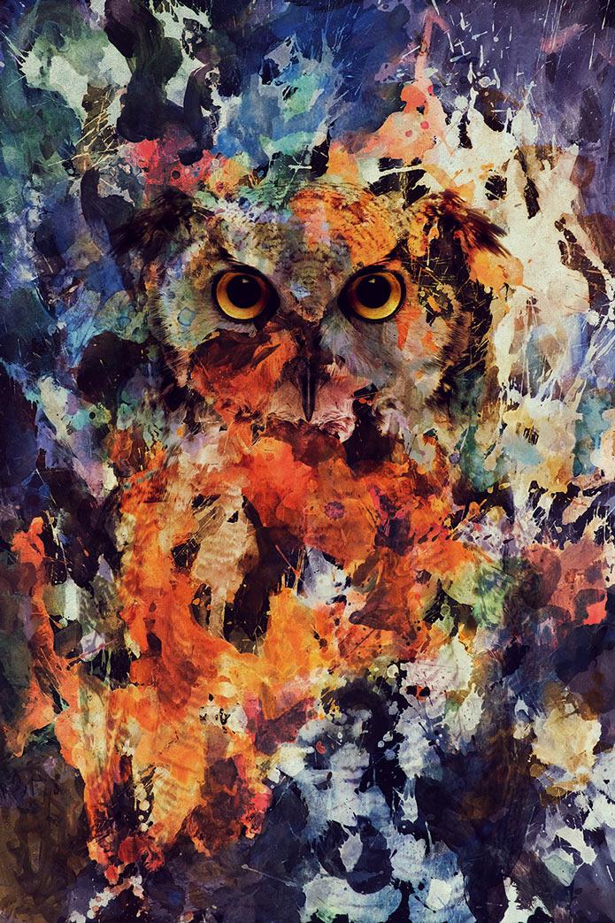 Картины акварелью, сова, птицы