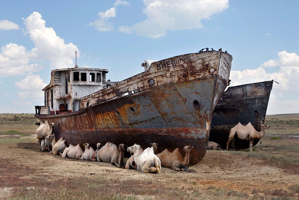 Аральск, Казахстан. Заброшенные корабли, верблюды