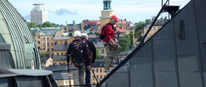 Крыши Стокгольма экскурсия