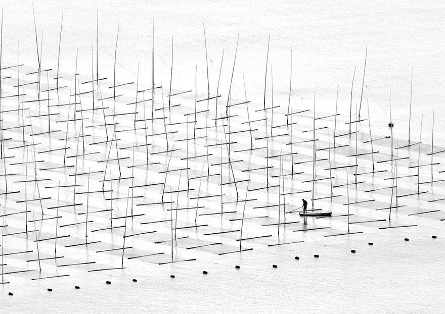 Морская ферма, Китай, конкурс фотографий National Geographic трэвел-фотограф года 2016
