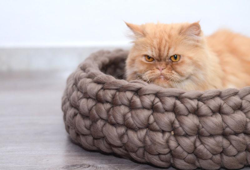 Вязаный декор, постель для кота